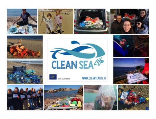 pulire il mare fa venire il buonumore!