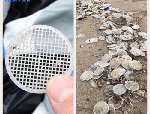 spiaggiamento di dischetti /aggiornamento n1