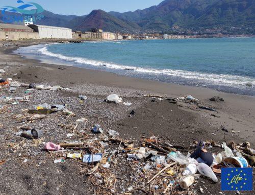 precisazione sul presunto disastro ambientale da dischetti